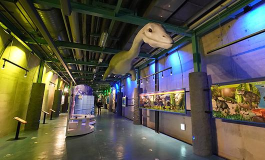 石油文化ホール